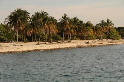 Maria la Gorda's beach